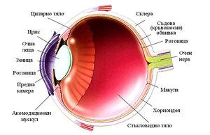Лазерное лечение глаукомы и пяточной шпоры