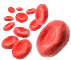 Повышенный гемоглобин – хорошо это или плохо