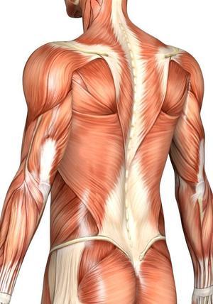 Препарат для снятия мышечных спазмов