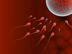 Женщина репродуктивного возраста это