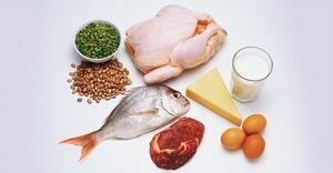 Перечень необходимых человеку продуктов, содержащих белок